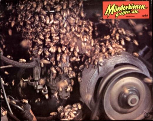 Mörderbienen-fressen-Motor